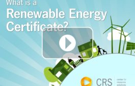 What Is a Renewable Energy Certificate?...
