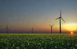 January 14 Green Energy News...