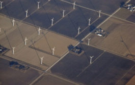 March 7 Green Energy News...