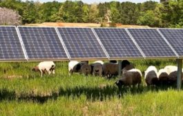 UK poised to set new solar record...