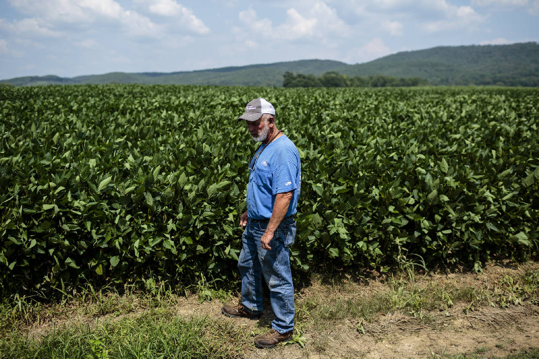 Georgia farmer Alan Scoggins (Photo: Doug Strickland | Times Free Press)