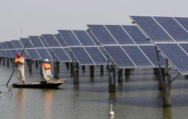 December 13 Green Energy News...