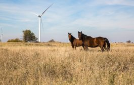 January 5 Green Energy News...