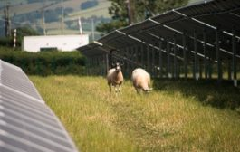 European Commission ditches tariffs on Chinese solar imports...