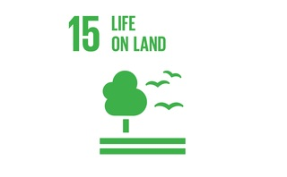 The BusinessGreen Guide to the SDGs: SDG15 - Life on Land...