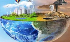 The 5 Most Common Environmental Pollution Exposures...