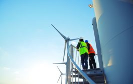 Poll: Renewables workers 'unfazed' by Covid-19 impact o...