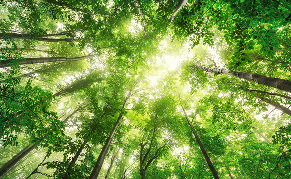 The Net Zero Nature summit takes place on 27 May 2021
