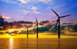 November 17 Green Energy News...