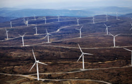Scotland should power ahead with 50 per cent clean energy target,...