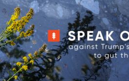 Speak Out on the EPA!...