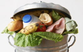 MPs call for national food waste target...