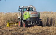 It's all about the waste: Use food scraps over crops for cli...
