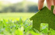 Is Artificial Grass a Realistic Option for Your Home Landscape?...
