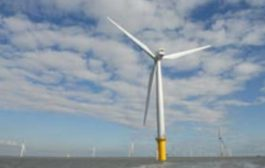 DONG Energy urges government to confirm future for renewables sch...