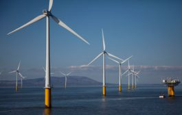 Dutch government confirms zero-subsidy wind farm will go ahead...