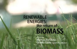 Renewable energies: the return of biomass...