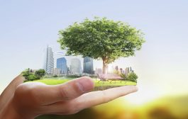 Why Should Your Business be More Sustainable?...