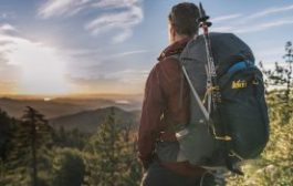 Eco-Friendly Backpack: Have You Considered One?...
