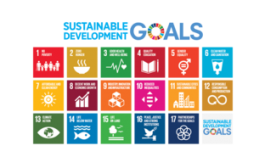 The BusinessGreen Guide to the SDGs...