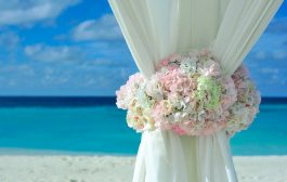How to Include the Planet on the Happiest Day of Your Life? Have ...