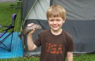How Summer Camps Educate Kids to Respect Nature and Protect the E...
