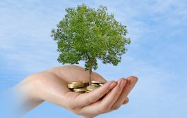 Green shoots: UK green and ethical fund investments hit £23.5bn...