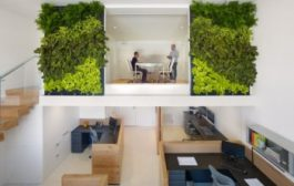 Green Jobs: How to Green Your Workspace...