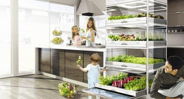 Earth Friendly Tips to Prepare Your Home for 2020...
