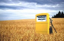 Used cooking oil – Benefits of Biofuels as a Source of Energy...