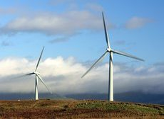 Poll: Energy efficiency, renewables, and nature restoration are &...