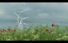 clean and green renewable sources of energy...